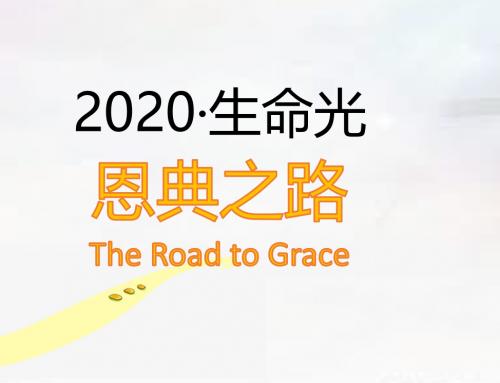 2020年生命光事工報告